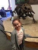 Enjoying Dinos!