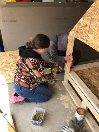 Building a chicken coop with a little help from Alek!